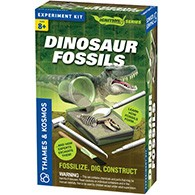 Dinosaur Fossils Product Image Downloads