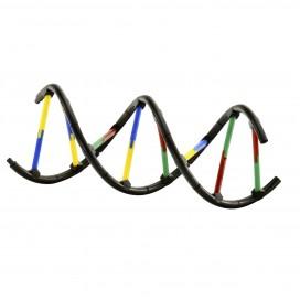 665002_geneticsdna_model.jpg