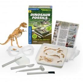 630416_dinosaurfossils_contents.jpg