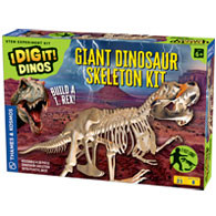 Giant Dino Skeleton Product Image Downloads