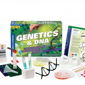665002_geneticsdna_contents.jpg